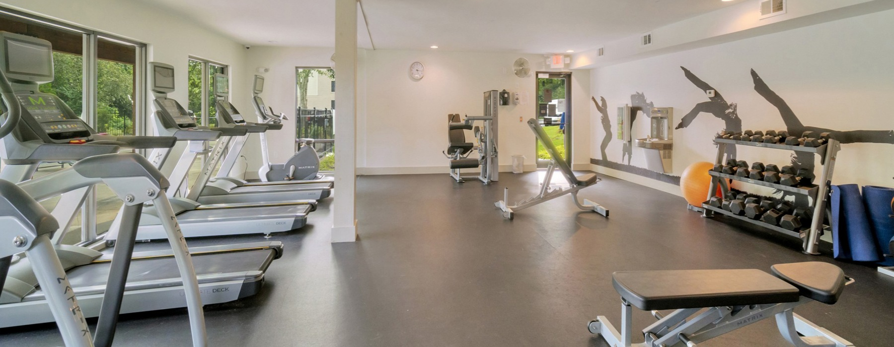 Fitness center with free weights, treadmills and ellipticals